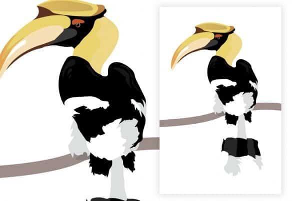 Hornbill Illustration in vector